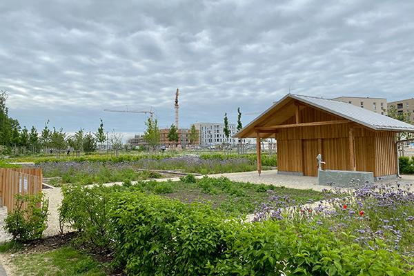 Nachbarschaftstreff Freiham: Freihamer Freiluftgarten in der ersten Saison
